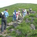 花と風景の山旅
