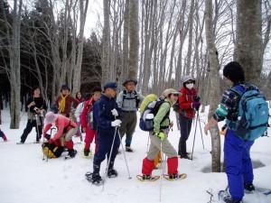 ベテランガイドと行く残雪のブナ林トレッキング