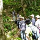 新緑の高瀬峡ハイキングとそば打ち体験